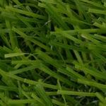 Designer Grass 25mm Luxuriant Lush