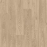 Strut Gambel Oak 119m